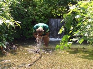 小川で水浴び