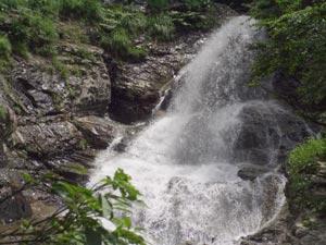 ダイナミックな滝