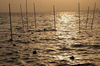 児島湖の夕景