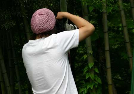 竹に食いつくせがれ