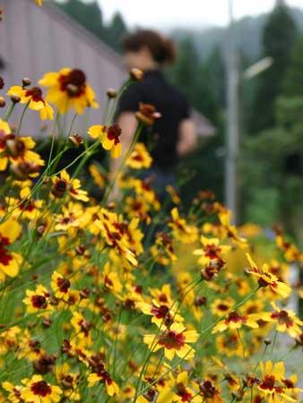 花とIKKO