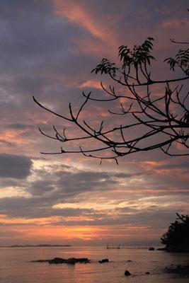 玉野市胸上の朝日