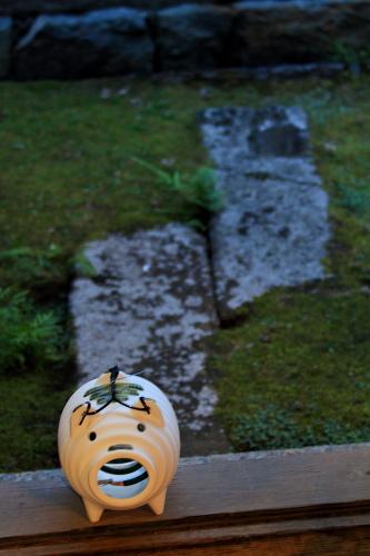 水まんじゅう【和菓子】水まんじゅう