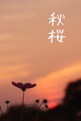 吉備路備中国分寺