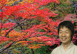 久里浜の紅葉も綺麗