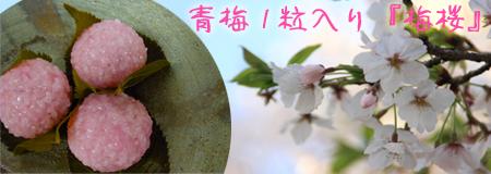 桜餅の青梅入り『梅桜』